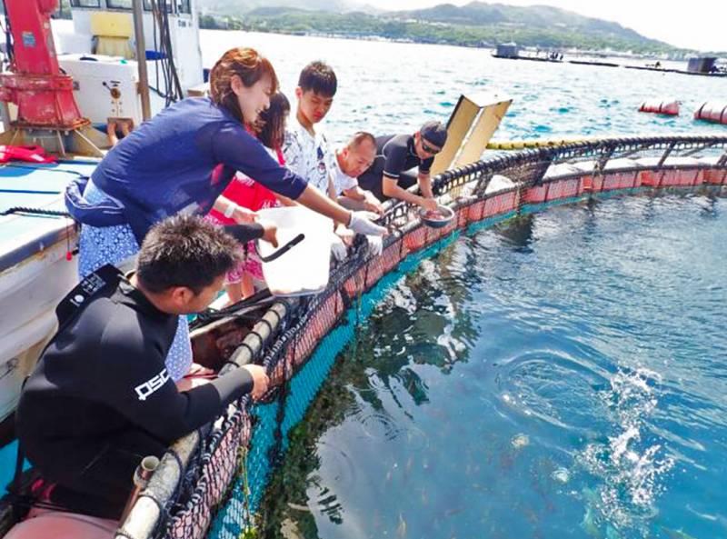 【通年】マンタやサメの飼育観察体験ツアー